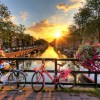 Amsterdam & the Keukenhof Gardens (incl. City Canal Cruise)
