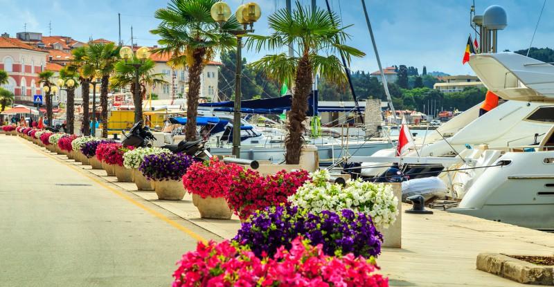 Stunning colorful flowers and promenade,Porec,Istria region,Croatia,Europe