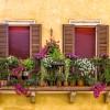 shutterstock_Verona