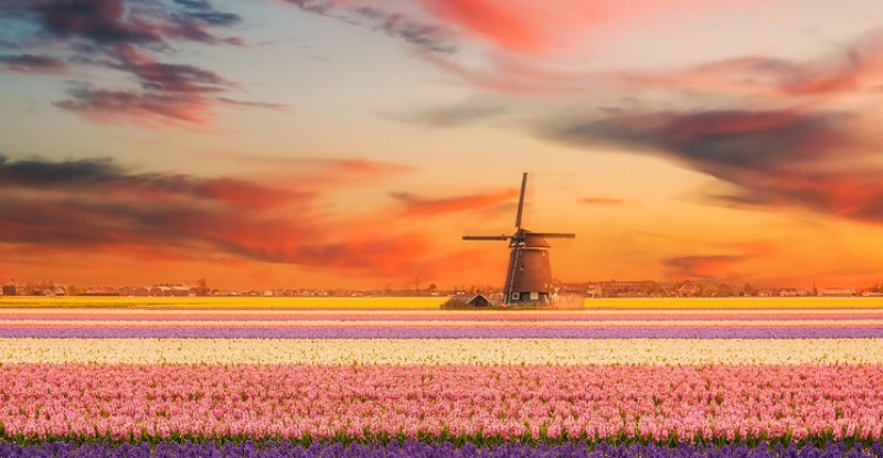 Explore Europe Amsterdam s 10
