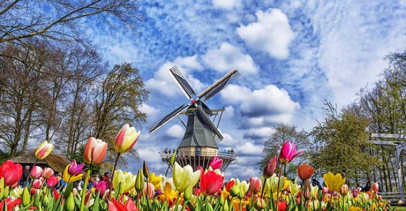 Explore Europe Amsterdam s 11