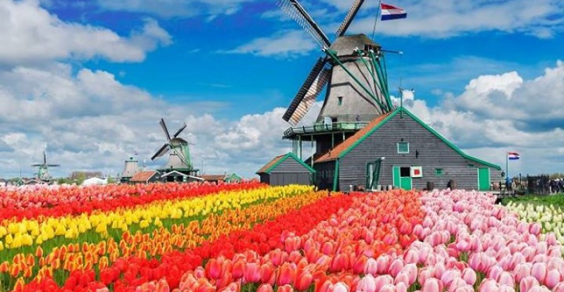 Explore Europe Amsterdam s 1