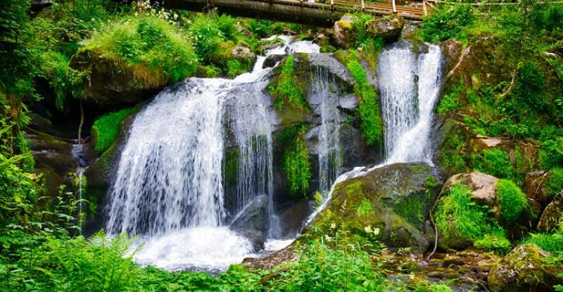 Explore Europe Black Forest s 11