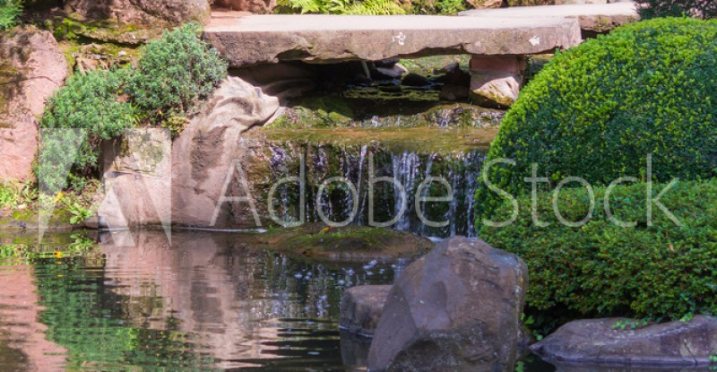 AdobeStock_321677993_Preview