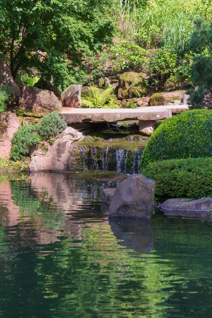 Relaxing Japanese Garden